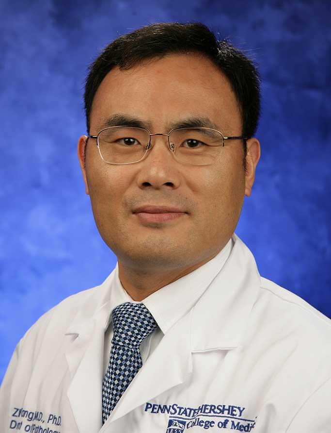 Zhaohai Yang, M.D.,Ph.D.