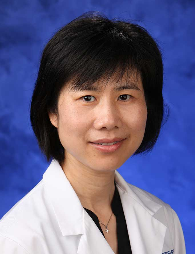 Hong Zheng, MD, PhD
